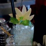 madonna-flower